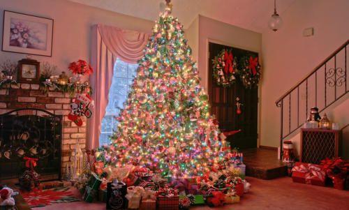 arboles de navidad como idea de negocio para ganar dinero en navidad