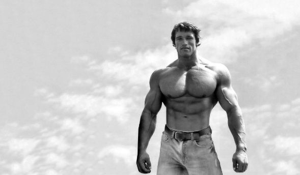 Que nadie te diga que algo no se puede hacer - Arnold Schwarzenegger